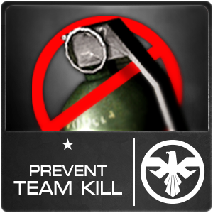 Prevent Team Kill (30)