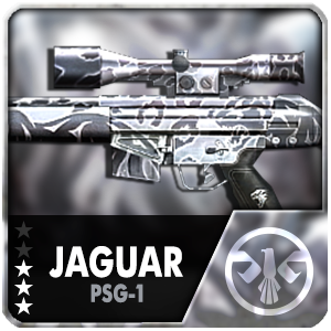 JAGUAR PSG-1 (1 Day)