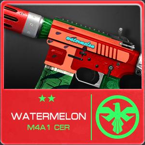 WATERMELON M4A1 CER (Permanent)