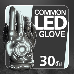Common LED Glove (30 วัน)