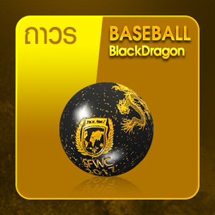 Baseball Black Dragon (ถาวร)