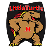 Little Turtle by M Cyber