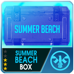 SUMMER BEACH BOX